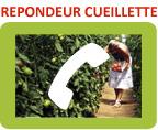 contact_cueillette_imbermai